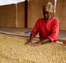 Руанда, Мухара, пібері