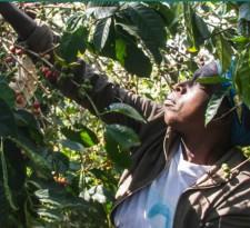 Руанда, Дукунде-Кава Мусаса